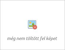 Websas.hu portal – Free Online Statistics